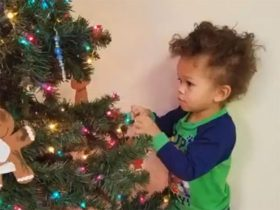 Toddler adds an ornament to the Christmas tree.