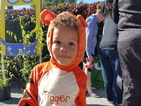 Toddler dress as Tigger for Halloween.
